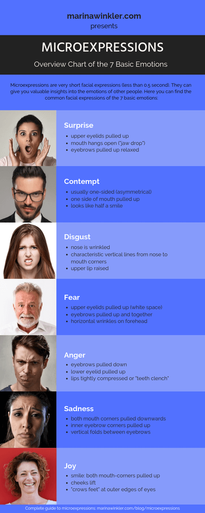 Microexpressions Chart